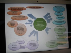 Peasant Agroecology - a movement of peasants and citizens in action! From the talk by Ibrahima Coulibaly, Mali farmer and activist with Via Campesina at the workshop on CSA and agroecology.