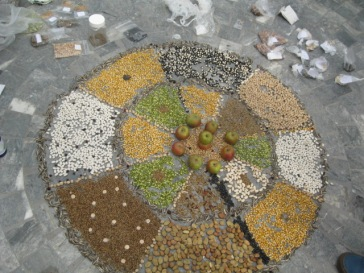 The Mandala of seeds from CSAs around the world.